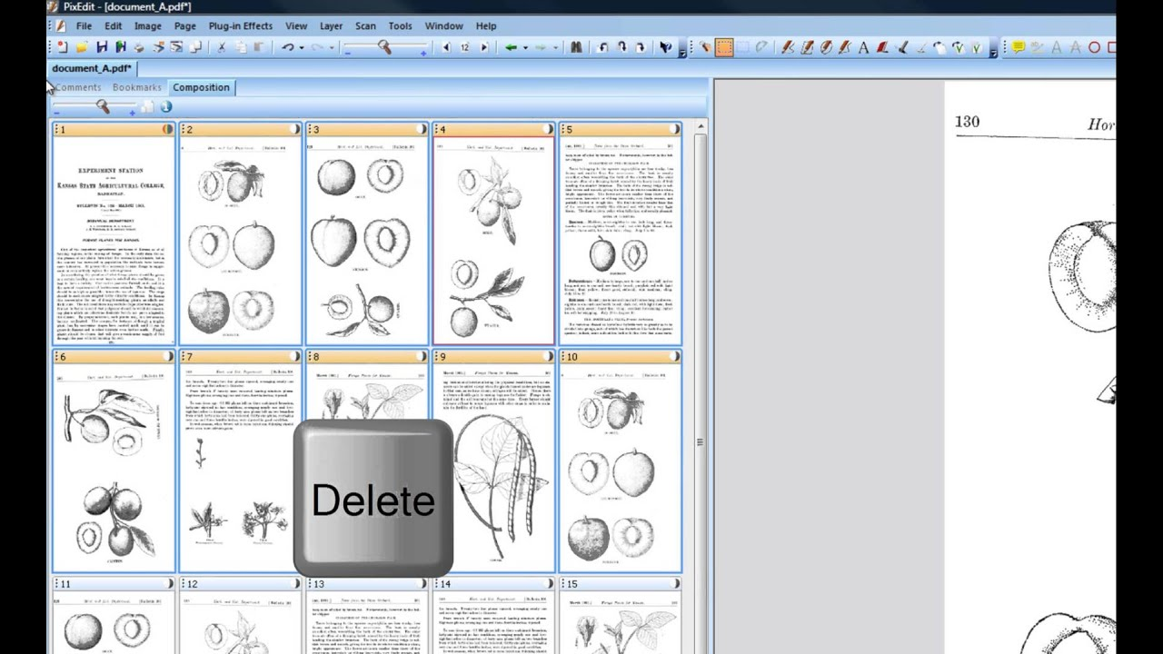 06 How to delete pages