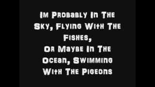 The Sky Is The Limit Lyrics  Lil Wayne