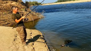 Рыбалка сазан в волгограде