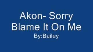 Akon- Sorry Put The Blame On Me with lyrics