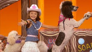 America's Got Talent 2017 Pomeyo Family Dogs Performance & Comments Judge Cuts S12E11