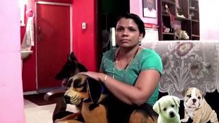 Sajan Dog Training And Caring🐶🐕[ Certified Academy ]kottayam,pala Call 09946515222