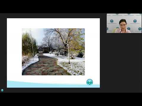 Как сделать ландшафтный дизайн фактором привлекательности санатория?