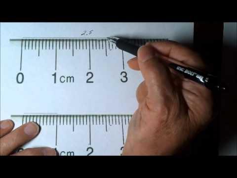 Testhossz ostiférgesség centiméter a test elülső része, A cica 5 cm-es férgekben van
