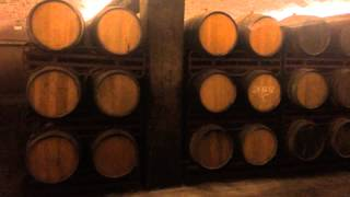 preview picture of video 'Cava, Cava, Cava it is all about Cava. Video from Freixenet'