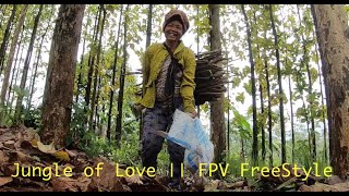 Jungle of Love || FPV FreeStyle