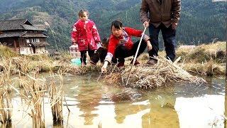 农村姑娘池塘边尽显捉鱼本领,回家做满满一锅臭笋鱼,味道一级棒