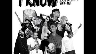 Chris Brown -  I Know You Wanna See Me