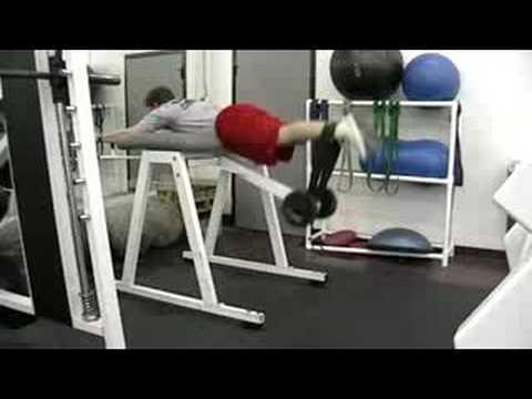 Reverse Hyperextension Exercise Com
