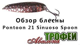 Pontoon 21 3d spoon sampliora