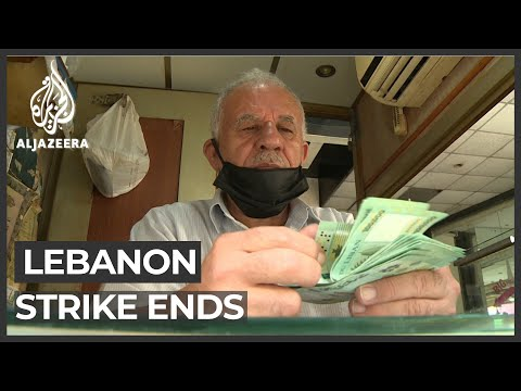 Lebanon money exchangers back at work after strike