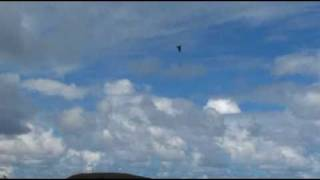preview picture of video 'F-22 at Kaneohe, HI Air Show'