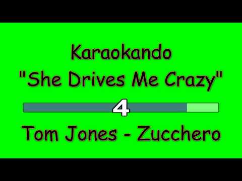 , title : 'Karaoke Internazionale - She Drives Me Crazy - Tom Jones - Zucchero ( Lyrics )'