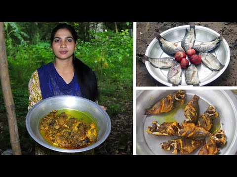 Tilapia Fish Gravy Cooking Recipe by Village Food Life
