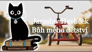 Jaroslav Havlíček - Bůh mého dětství (Mluvené slovo CZ)