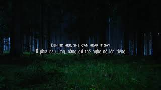 [Vietsub + Lyrics] Lily   Alan Walker; K 391; Emelie Hollow