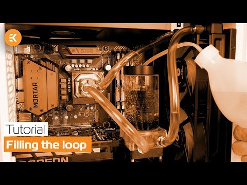 Filling the loop