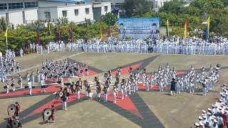 Display Drumband STIP BATCH  LV Gel 1