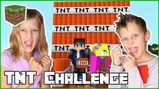 The TNT Challenge Games / Ronald vs Karina / Minecraft