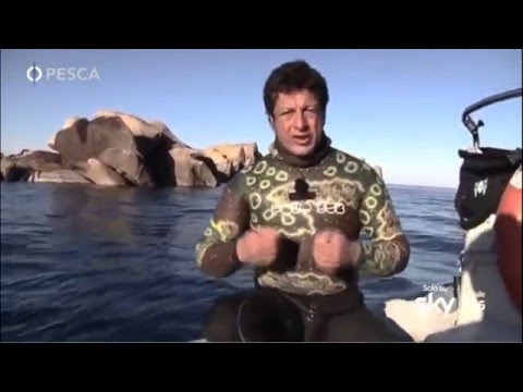 Video di pesca di Sakhalin