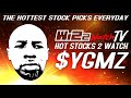 Stock 2 Watch 01.07.2021 $YGMZ