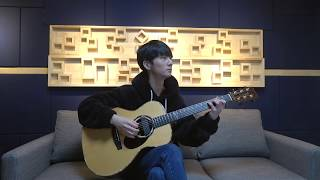 (Don Mclean) Vincent (Starry Starry Night) - Sungha Jung