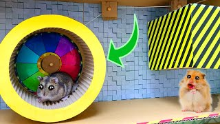 🐹AWESOME HAMSTER MAZE with TRAPS 😱Obstacle Coursefor Pets in real life