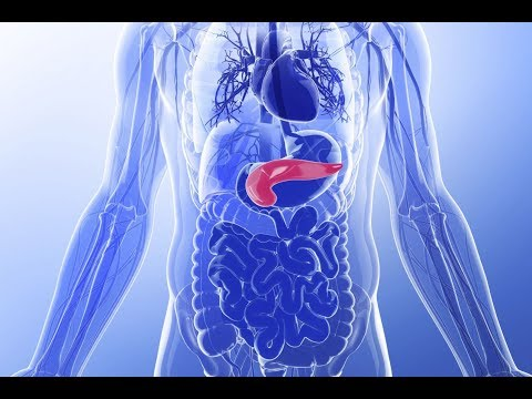 Почему у людей бывает сахарный диабет