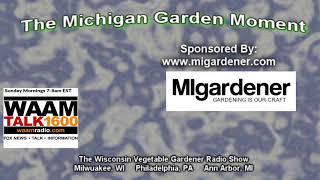 Michigan Garden Moment - Starting seeds off right indoors