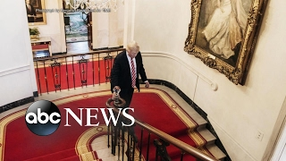 Trump redecorates White House with gold walls, chandelier