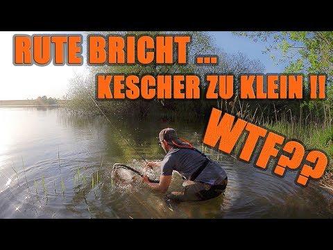 Diesen Drill werde ich nie vergessen!! Fisch passt nicht in den Kescher und zerstört meine Rute!