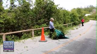 St David's Resident & Mp Cut Roadside Trees, April 29 2015