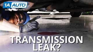 Puddle Under Your Car or Truck? How to Diagnose Transmission Leaks