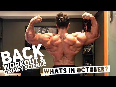 Le programme pour les entraînements des groupes des muscles
