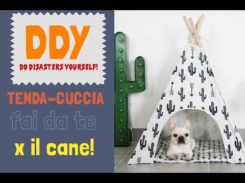 DDY: Tenda fai da te per il cane!