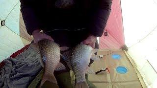Рыбалка зимняя на реке цимла