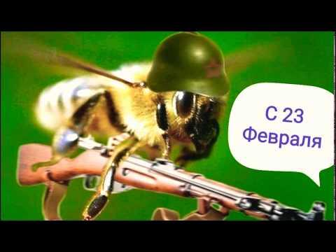 Пчеловодам позитива и хорошего настроения,с праздником!!!