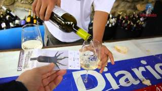preview picture of video 'Pidiendo un vino blanco en la Fiesta de la Vendimia de la Rioja Alavesa'