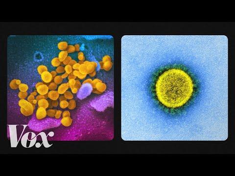 A térdízület ízületi gyulladásának gyógyszerei