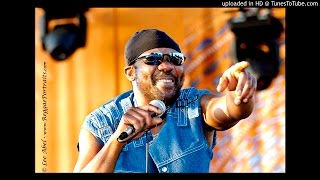 The Maytals_ It's you