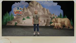 in the wild vbs 2019 preschool songs - TH-Clip