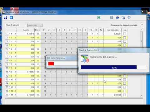 Preview video SIMULAZIONE STUDI SETTORE - RANOCCHI GIS