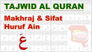 Belajar Tajwid 25: Makhraj & Sifat Huruf Ain عَ | Tahsin | Aisar | Ustadz Abu Hamid Fauzi Bin Isnen