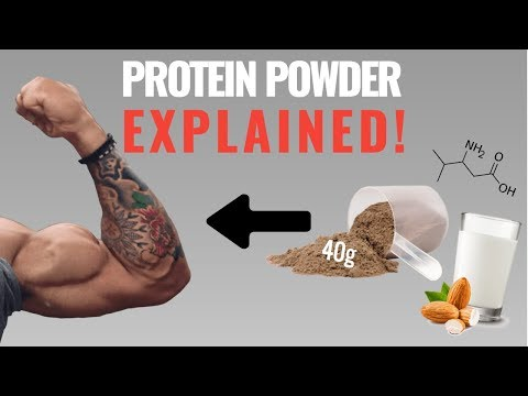 Protein Powder: How to Best Use It For Muscle Growth (4 Things You Need to Know)