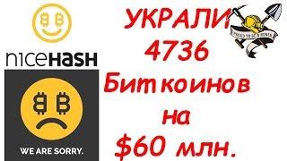 NiceHash УКРАЛ 4736 Биткоинов на 60 млн ДОЛЛАРОВ у своих пользователей