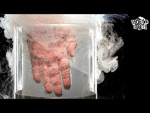 Tratamentul artrozei cu traumeel