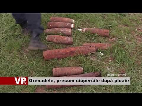 Grenadele, precum ciupercile după ploaie