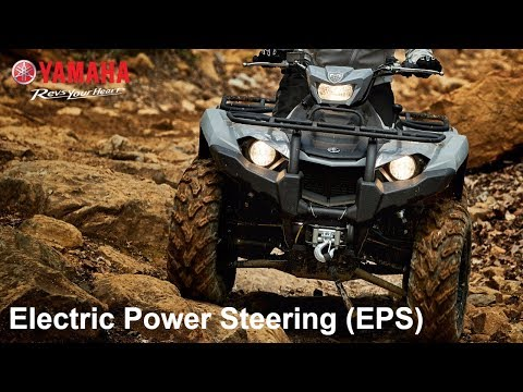 2018 Yamaha Grizzly EPS LE in Sandpoint, Idaho