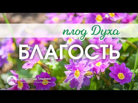 """Благость"" - Александр Тищенко"