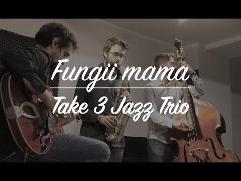 """""""Fungii Mama"""" - Take 3 Jazz Trio"""